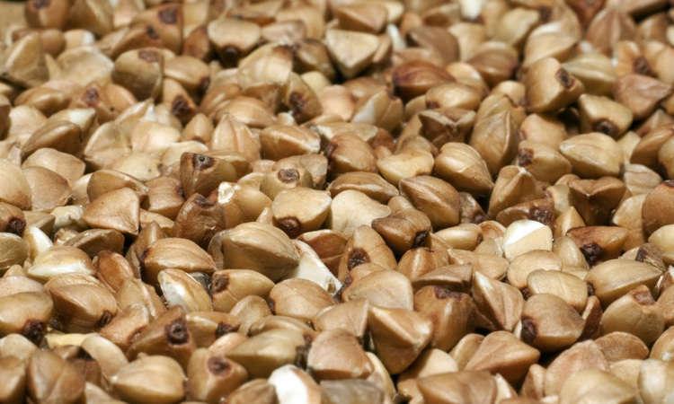 Minestra di grano saraceno con mazzancolle e zucchine