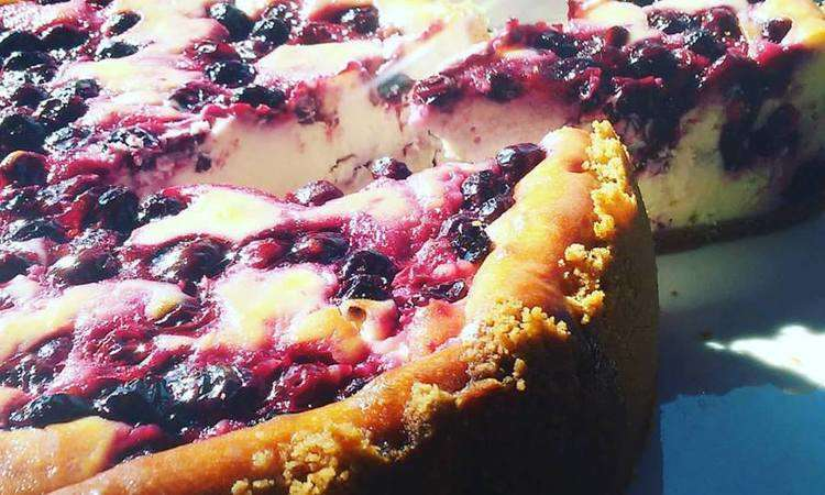 Cheese cake ai mirtilli