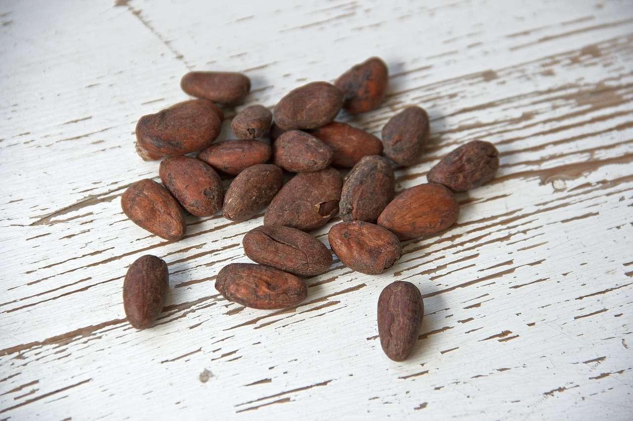 Torta al cioccolato e noci pecan senza farina