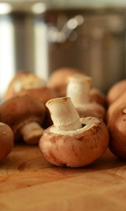 Pasta integrale con ragù di soia e funghi secchi